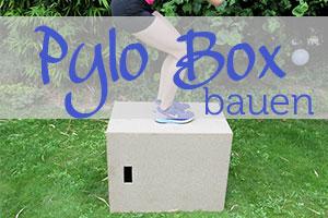 Box jumps mit Plyo Box