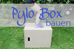 Box Jumps mit Box
