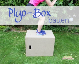 Plyo_Box_bauen